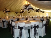 featherfantasywithchaircovers