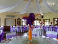 ultra-purple-sash-and-napkins
