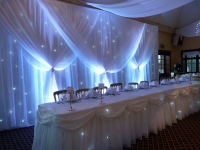 grecian backdrop set with twinkle lights and uplighters - Copy
